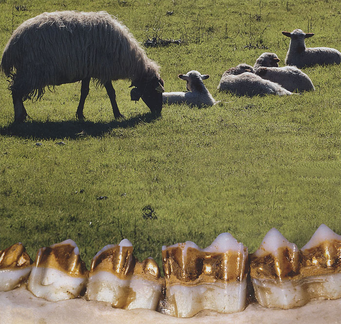 http://www.greek-islands.us/crete/the-sheep-with-the-golden-teeth/the-mystery-of-crete-1.jpg